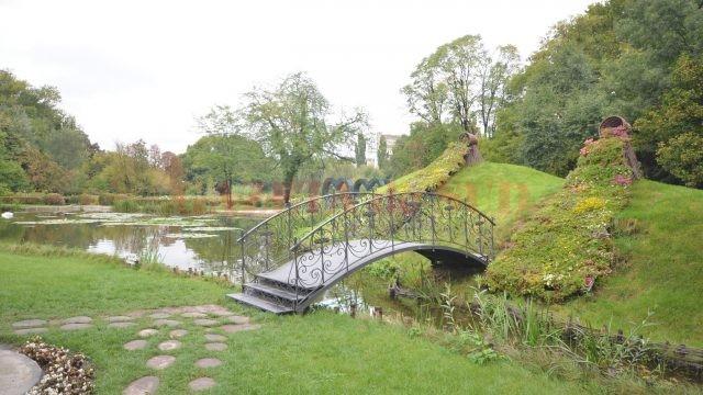 Unul dintre podurile din Grădina Botanică