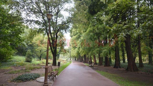 Botanica este deschisă publicului și poate fi vizitată
