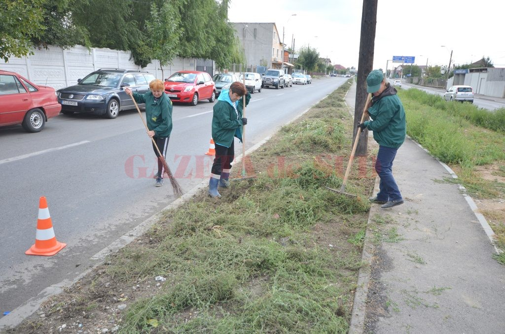 Angajații RAADPFL au început să curețe de buruieni spațiul verde de pe strada Râului (FOTO: Traian Mitrache)