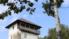 Cula Cernătescu, bijuterie arhitectonică rară în Europa, este în paragină (Foto: Lucian Anghel)