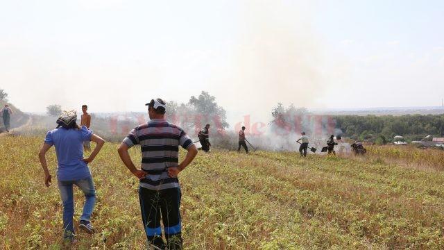 Oamenii au ajutat la stingerea incendiului de teamă că acesta le-ar putea afecta locuinţele (Foto: Lucian Anghel)
