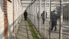 angajati-penitenciare