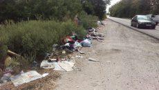 Gunoiul care era aruncat luni pe marginea DN 55 Craiova - Bechet,  la ieșirea din comuna Malu Mare (Foto: Marian Apipie)