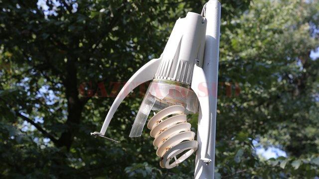 Multe din lampadarele din Parcul Tineretului sunt distruse, nu mai au plăcuțele care acoperă partea electrică, firele de curent fiind lăsate la vedere