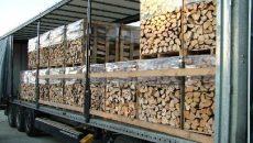lemne (1)