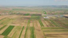 Procurorii DNA susțin că inculpata Floarea Roșca a declarat la APIA Dolj suprafețe mai mari de teren decât deținea în realitate