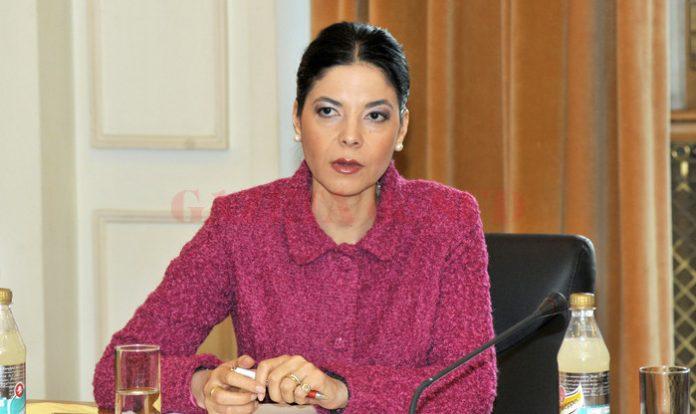 Ana Birchall: Fetița trebuie să rămână în România
