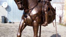 De un an, calul lui Otetelișanu nu a mai ajuns la Caiova