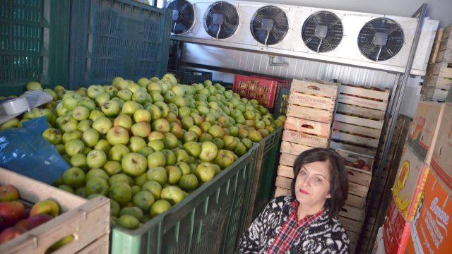 Depozitul frigorific de fructe din Salcia este singurul din Mehedinţi (Foto: Claudiu Tudor)