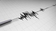 Cutremur-seismograf-e1456813356690