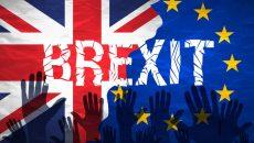 brexit_14