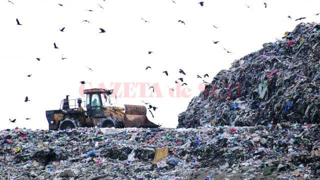 Așa arăta, pe 5 ianuarie, Celula 5 a depozitului de deșeuri de la Mofleni, ultima aflată în exploatare (Foto: Bogdan Grosu)