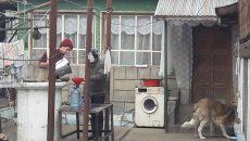 Localnicii economisesc fiecare litru de apă (Foto: arhiva GdS)