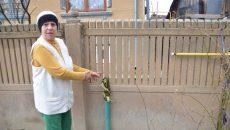 Locuitorii de pe strada Fermei din comuna doljeană Podari și-au făcut instalațiile de gaze (Foto: Claudiu Tudor)