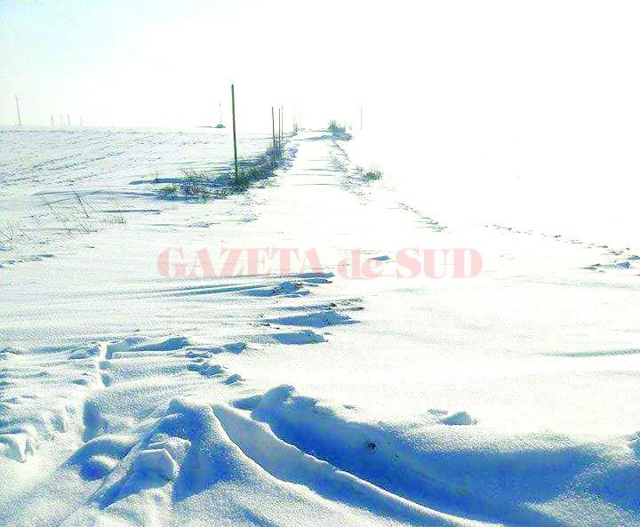 Drumul spre satul Foişor (Foto: cititor GdS)