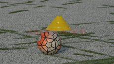 minge zapada artificial