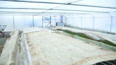 Fabrica de procesare şi depozitare a legumelor din Grădinari ar urma să îşi deschidă porţile în această primăvară (Foto: Claudiu Tudor)