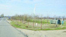 Terenul unde ar urma să fie construit Spitalul Regional Craiova (Foto: arhiva GdS)