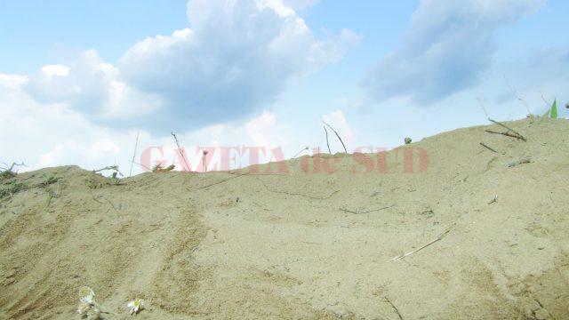 Dune de nisip în sudul Mehedințiului