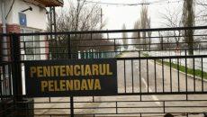 penitenciarul-pelendava