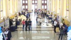 Studenții craioveni pot obține stagii de pregătire profesională în străinătate cu burse cuprinse între 500 și 700 de euro