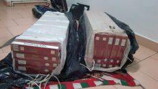 Procurorii DIICOT au confiscat aproape 1.500 de pachete de țigări de contrabandă în urma perchezițiilor făcute miercuri la domiciliile suspecților