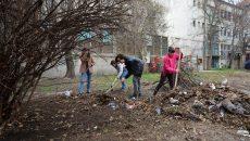 Voluntarii au ridicat gunoiul din zona străzii Gheorghe Doja (Foto: Bogdan Grosu)