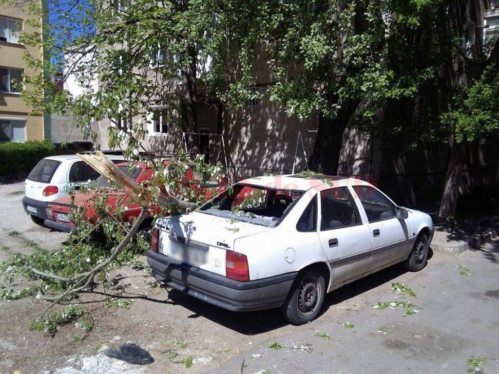 Un copac a căzut din senin peste un autoturism aflat în parcarea unui bloc (Foto: Valentin tudor)