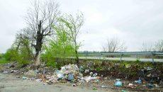 Gropi de gunoi la intrările în orașul Craiova (Foto: Bogdan Grosu)