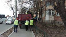 Cea mai mare pondere a veniturilor realizate de RAADPFL Craiova provine din lucrările de amenajare și întreținere a zonelor verzi