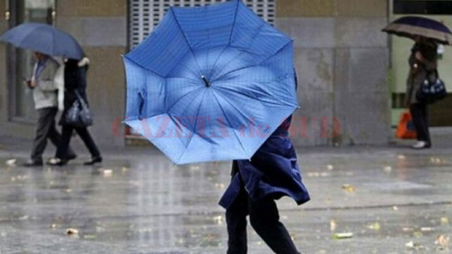 ploi vant