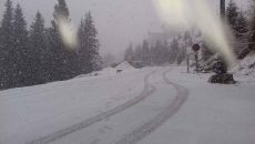 Strat de zăpadă de peste 10 centimetri la Rânca