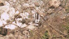 shimla-story-647-041917015006