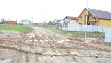 Străzile din cartierul Veterani devin impracticabile după fiecare ploaie, din cauza noroiului și a bălților (FOTO: Claudiu Tudor)