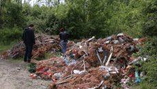 """Zona verde de la marginea Craiovei unde RAADPFL a amenajat """"temporar"""" o groapă de gunoi și unde au fost descoperite osemintele și resturile de sicrie (Foto: Lucian Anghel)"""