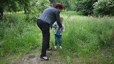 Copiii sunt cei mai predispuși mușcăturilor de căpușe