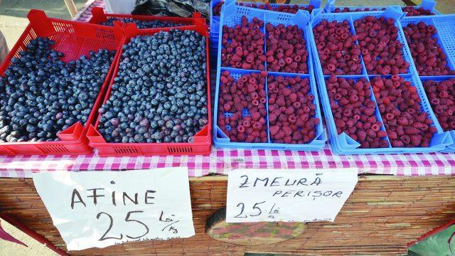 Zmeura şi afinele, cele mai scumpe fructe din piaţă (Foto: Bogdan Grosu)