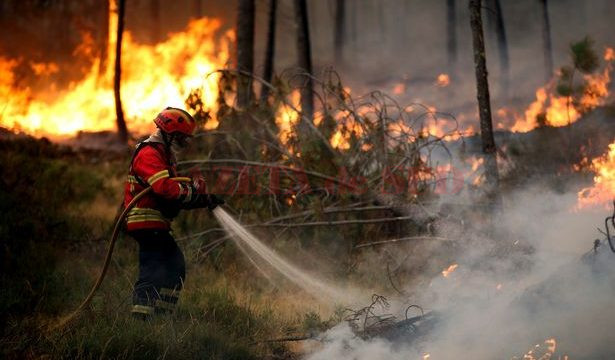 PAY-Forest-fire-in-Regoufe-Arouca