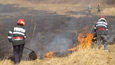 La sârșitul săptămânii trecute, pompierii doljeni au intervenit pentru stingerea a 35 de incendii care au cuprins peste 100 de hectare de vegetație uscată și cultură de grâu.