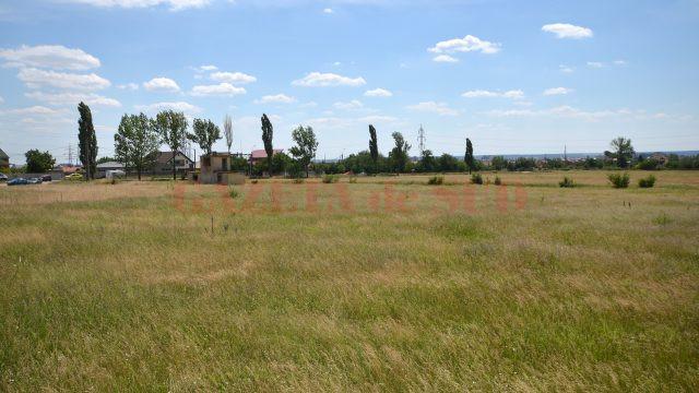 Terenul de 9,7 hectare unde ar urma să se construiască Spitalul Regional Craiova (Foto: Bogdan Grosu)