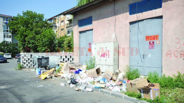 Ghena de gunoi din apropierea pieţei este plină şi urât mirositoare (Foto: Bogdan Grosu)