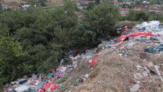 O groapă de gunoi s-a format la marginea Bucovăţului (Foto: Lucian Anghel)