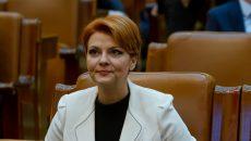 Olguţa Vasilescu: Dacă nu corectăm sistemul, vom ajunge într-o situaţie foarte neplăcută. Economia nu poate să susţină astfel de creşteri.