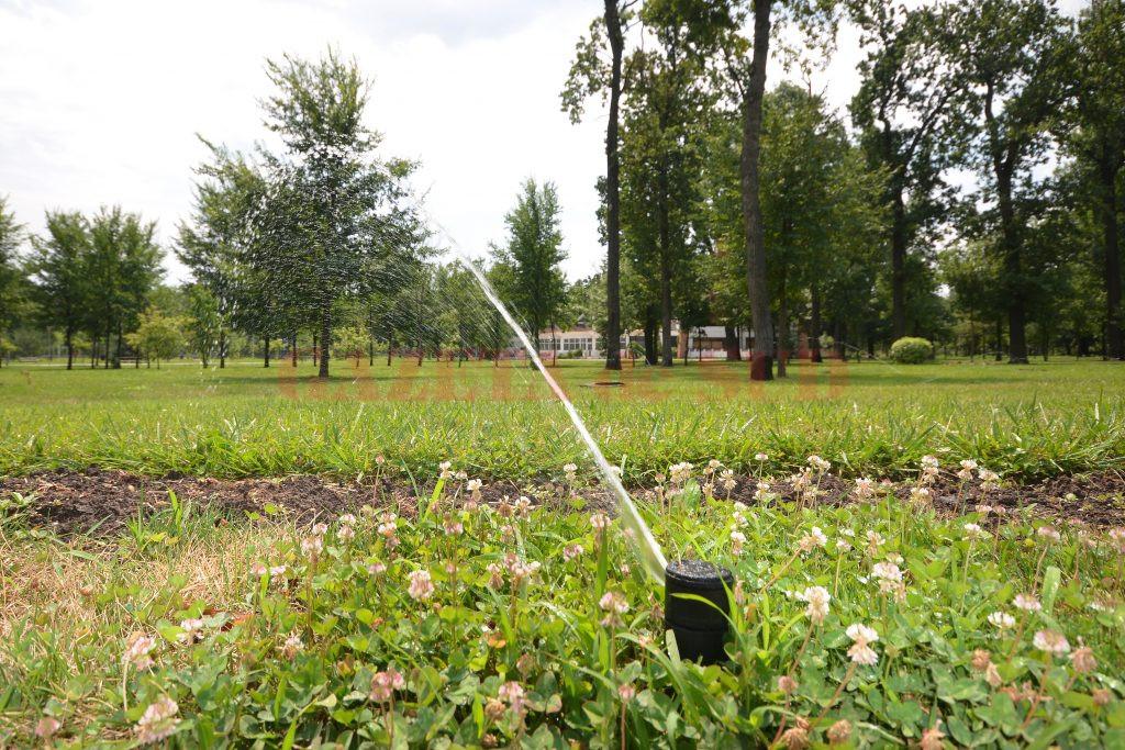În Parcul Tineretului, aspersoarele ţin în viaţă vegetaţia (Foto: bogdan Grosu)