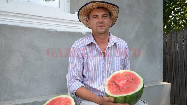 Ion Călina, sau Viorel, cum îl ştie toată lumea, a demonstrat că dulcele de Dăbuleni se poate face şi în Vulpeni (Foto: Bogdan Grosu)