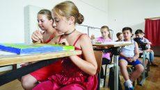 Anul acesta, 25 de copii frecventează cursurile Şcolii de Vară de la Vulpeni (Foto: Bogdan Grosu)
