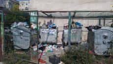 În platforma de pe strada Ion Augustin, gunoiul se aruncă şi lângă containere (Foto: Claudiu Tudor)