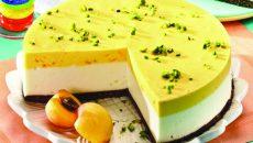 tort-inghetata-in-trei-culori-580x400
