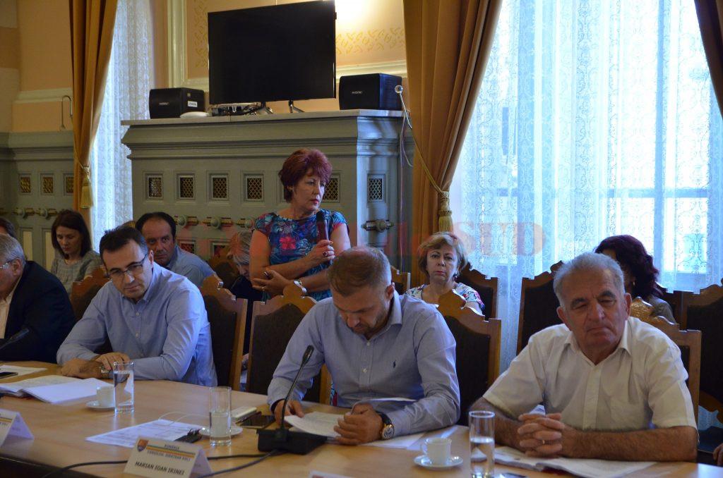 Aurelia Dărac, dând explicații consilierilor județeni