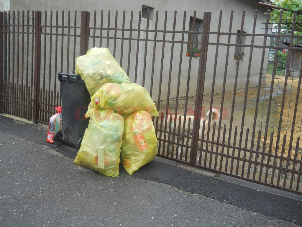 Se reia activitatea de ridicare a gunoiului la Târgu Jiu